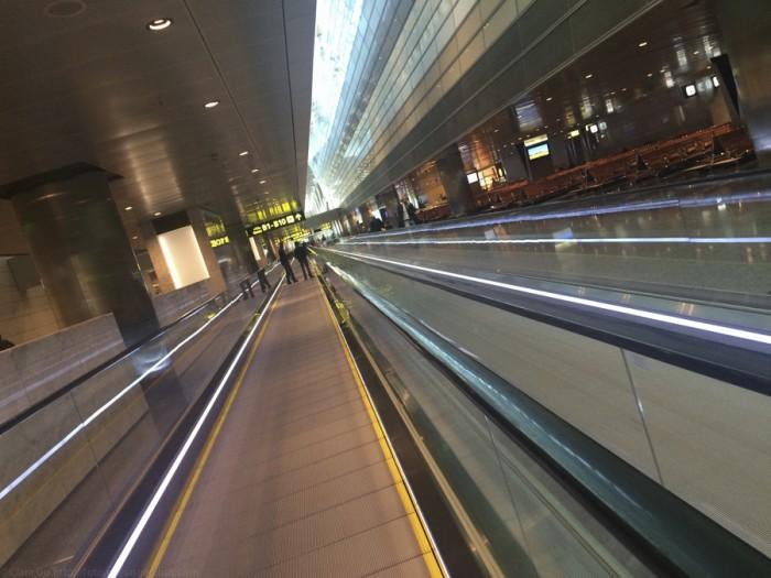 © Clara.Go-Doha-Qatar