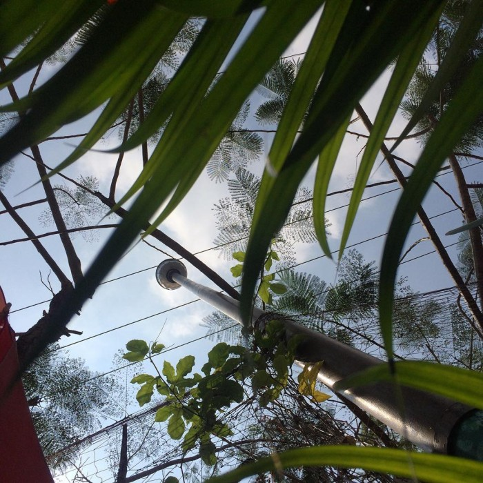 Alleppey Backwaters Kerela